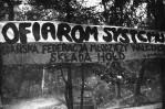 Akcja FMW na cmentarzu Srebrzysko